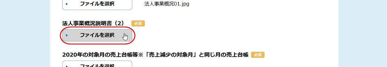 Sinsei48